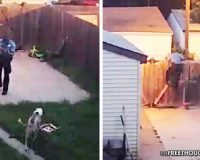 Minnesota:  Cop Trespasses, Shoots Family's 2 Service Dogs In Front Of Child – Taxpayers To Be Held Liable