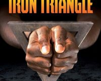 The Iron Triangle: Inside The Liberal Democrat Plan