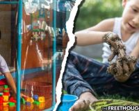 As Government Puts Kids In Bubbles, Study Suggests Playing In The Dirt Boosts Immune Systems