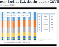 Health Reporter:  Johns Hopkins Study Explodes COVID Death Hoax – It's Re-Labeling On A Grand Scale