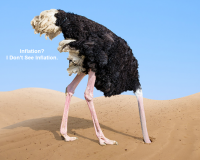 There Are No Hawks on the Fed, Only Ostriches