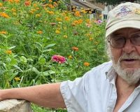 Missouri:  80-Year-Old Veteran Facing Fines & Jail For Butterfly Garden He Planted In His Front Yard
