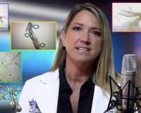 Dr. Carrie Madej: What I Saw In The COVID Shots Appeared Self-Aware & Superconductive (Video)